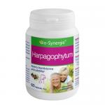 Harpagophytum (Gheara Diavolului), 60 capsule