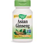 Korean Ginseng
