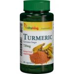 Turmeric - Curcuma Longa - 720mg