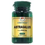 Astragalus Premium 450 mg, 60 capsule