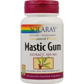 mastic gum helicobacter pylori