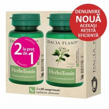 reglator-al-tensiunii-dacia-plant