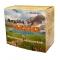 Argila tibetana Algo Bocan 200 gr, 500 gr, 1 kg